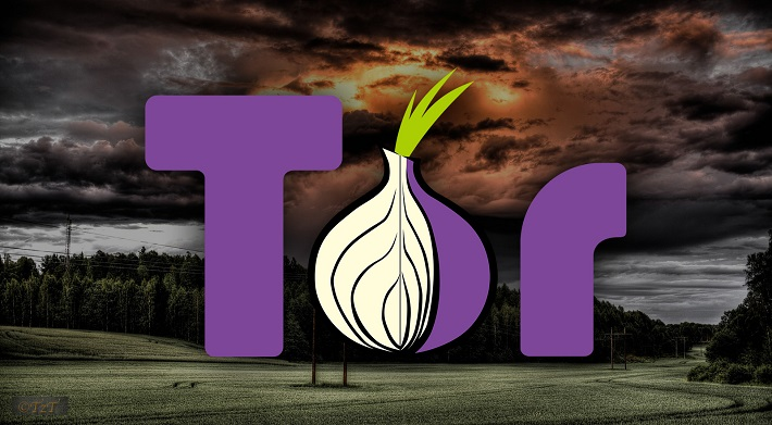 Преимущества тор браузер hyrda plugin for tor browser попасть на гидру